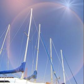 Sailboats by Marissa Enslin - Digital Art Things