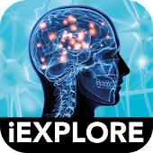 The Brain iExplore AR