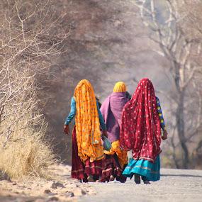 by Vijay Singh - People Street & Candids