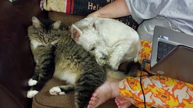 Photo: An uncomfortable closeness.