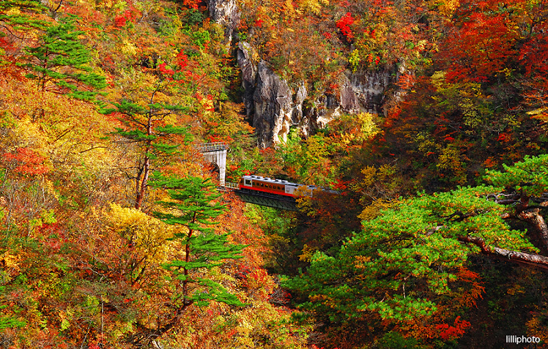 Photo: Nuruko Gorge located in Miyagi Prefecture, north of Sendai is one of the best locations for red leaves viewing in the Tohoku region. Since it is relatively close to the epicenter of the earthquake, I hope not much damage have been done to this beautiful place.