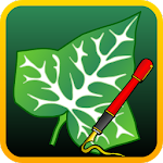 Ivy Draw: Vector Drawing Icon