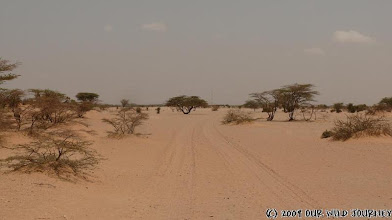 Photo: Báječná cesta z Omorate v Etiopii do Illeret v Keni / Lovely road from Omorate in Ethiopia to Illeret in Kenya