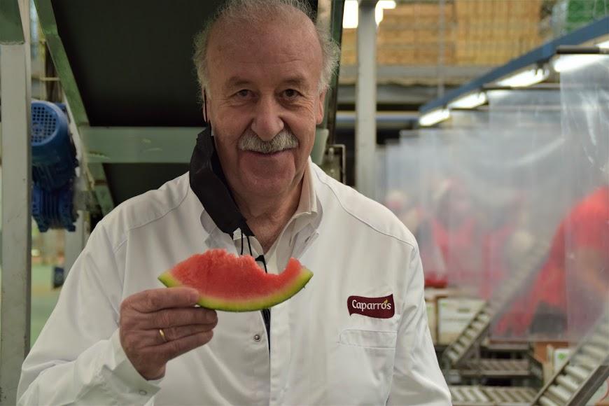 Comienza la campaña de comercialización de la sandía sin pepitas Premium de Caparrós.