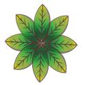 Ayahu Cerimônias com Ayahuasca icon