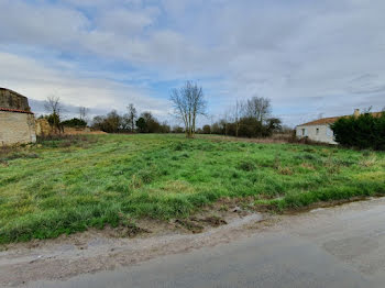 terrain à Saint-Saturnin-du-Bois (17)