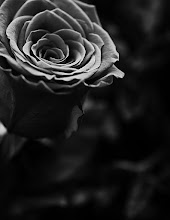Photo: the absence of color
