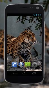 Mod Hacked APK Download 4K Jaguar Live Wallpaper 1 2