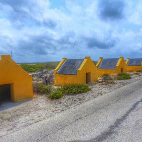 Slave quarters  by Ann Goldman - Buildings & Architecture Homes ( home, houses, aruba, row,  )