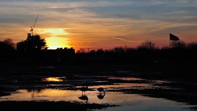 Photo: Brigg's Field
