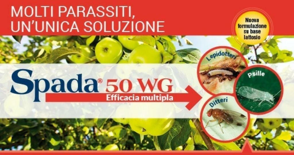 """""""Idea Progetto raccolta DifferenziAMOla 2.0"""" Proposta per migliorare la raccolta differenziata dei rifiuti nella Città di Reggio Calabria 6"""