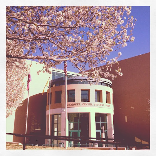 Photo: Trees blooming in front of Corbett.