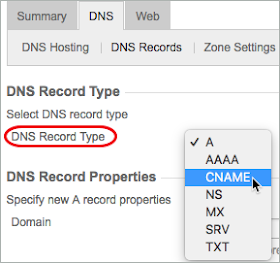 A red circle highlights the DNS Record Type list, and CNAME is selected from the list.