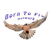Born To Fly Network