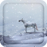 3D White Horse Live Wallpaper