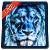 Lion Magic Touch Livewallpaper 2018