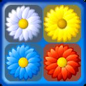 Flowers 10.10 Puzzle