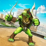 Shadow Ninja Hero Warrior Turtle