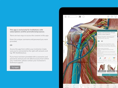 Human Anatomy Atlas 17 (Org.)- screenshot thumbnail