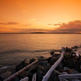 Seattle Sunset by Dan Warkentin - Landscapes Waterscapes ( driftwood, sunset, ocean )
