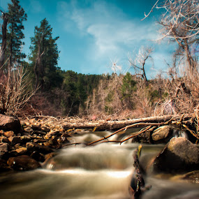 Through the Forest by Dustin White - Landscapes Waterscapes ( water, waterfall, trees, long exposure, forest, rocks,  )