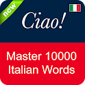 Italian Vocabulary Master icon