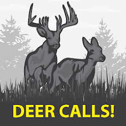 Deer Sounds & Calls!