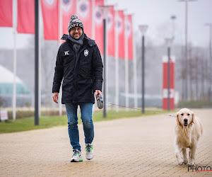Antwerp ontslaat zijn teammanager/persverantwoordelijke