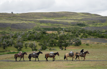 Photo: A gaucho (cowboy) leads a pack train to resupply one of the refuges