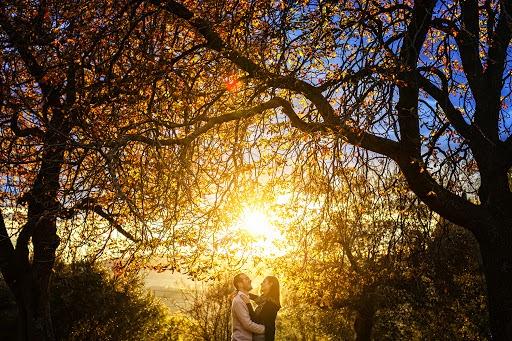 Wedding photographer Fabio Mirulla (fabiomirulla). Photo of 03.03.2016
