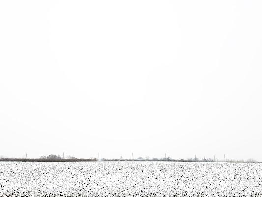 Natural black and white di MirkoFrignani