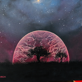 The Cosmos by Reinilda Sissons - Painting All Painting