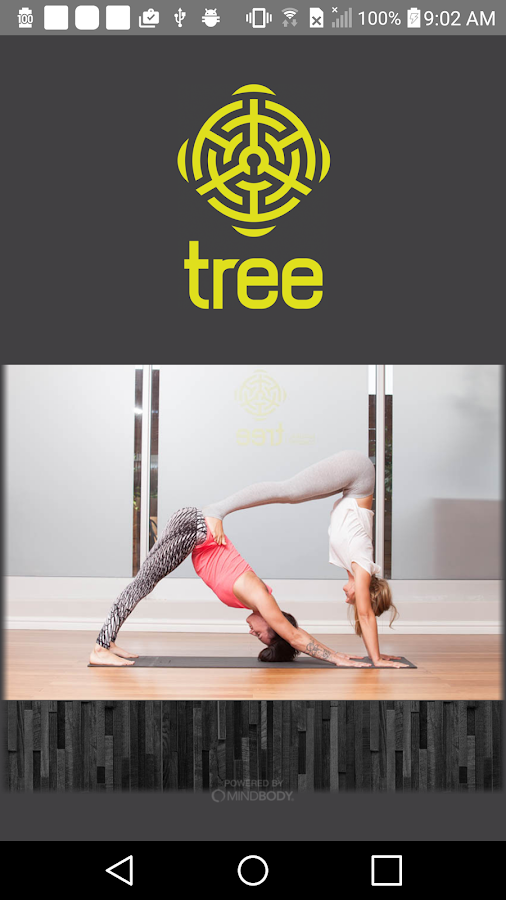 Tree Yoga- screenshot