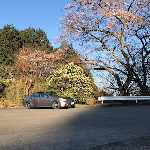 スカイライン PV36 のカスタム事例画像 ヒロさんの2019年04月04日21:29の投稿