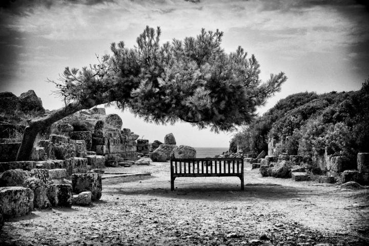 Su questa panchina   / Jacopo Rutini di bondell