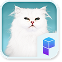 Elegant Persian Cat Theme icon