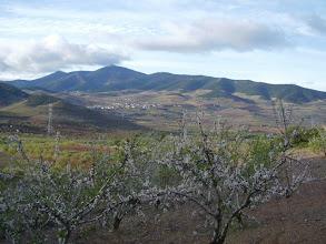 Photo: El Frasno, la Sierra de Vicort y la explosión de primavera