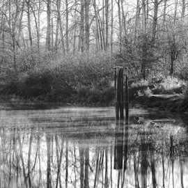 Snohomish River  by Todd Reynolds - Black & White Landscapes
