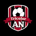 AN Tricolor