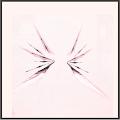 SR-剣翼の刃