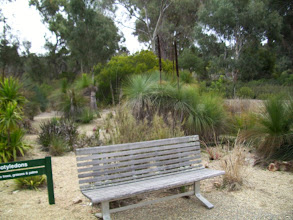 Photo: nice bench near the Blackboys - my second favourite, but the view when sitting not so nice