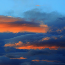 by Todd Ratisseau - Abstract Patterns ( god's glory, natural beauty )