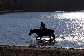 Photo: Abkühlung für Pferd und Reiter am Nordstrand Großensee