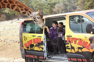 Photo: Visita Safari Aitana en el Discovery Bus Tour. Venta de billetes en www.excursionesbenidorm.com