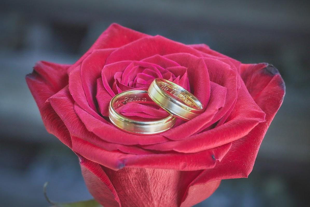 Los 50 mejores proveedores de bodas en Barcelona