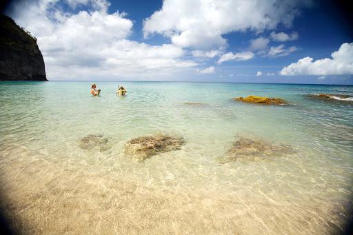 Montserrat-snorkelling-in-rendezvous-bay - Snorkeling in Rendezvous Bay, Montserrat.