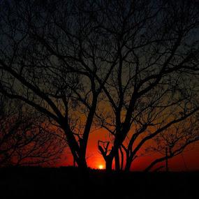 by Graeme Wilson - Landscapes Sunsets & Sunrises