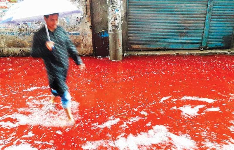 Rios de sangue da Eid al-Adha, em Bangladesh