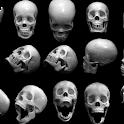 Skull Pack 3 Live Wallpaper icon