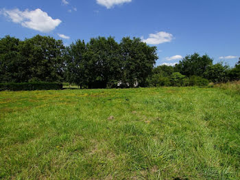 terrain à Montdurausse (81)